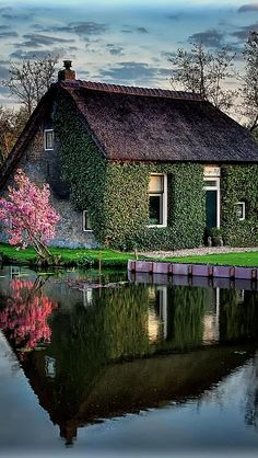 Cottage in the water