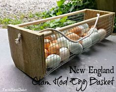 Here is a practical project you can build to help you carry all those chicken eggs into the house. Simple construction and a good design make this a must-have for your chicken coop. See the instructions at fresheggsdaily.com here… How To Build A Chicken Egg Gathering Basket
