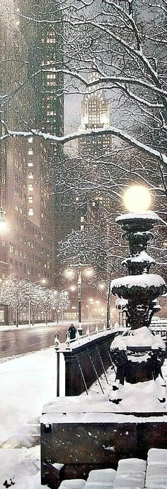 New York City takes on a different beauty in the winter snow. Winter Szenen, Winter Magic, Winter Time, Winter Christmas, New York In Winter, Christmas In New York, New York Snow, Winter Wonderland Christmas, I Love Snow