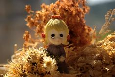 Came Lia took this awesome photo that has yellow, doll, autumn, macro photography in it