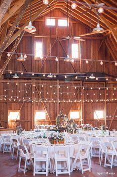 The Windmill Winery Wedding Photos | Scottsdale Wedding Photos | April Maura Photography | www.aprilmaura.com_1013.jpg