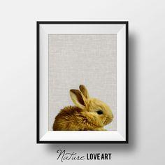Photographie lapin, décoration chambre bébé, cadeau garçon fille, poster à imprimer, photo d'animaux, Nature Love Art, téléchargement direct de la boutique NatureLoveArt sur Etsy