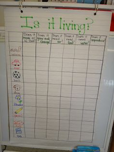 good activity to add to science journals. Or large classroom science journal to add in reading center. Could be made from a large binder with journal sheets in sheet protectors. Primary Science, Kindergarten Science, Elementary Science, Science Classroom, Teaching Science, Science Education, Science For Kids, Science Activities, Preschool