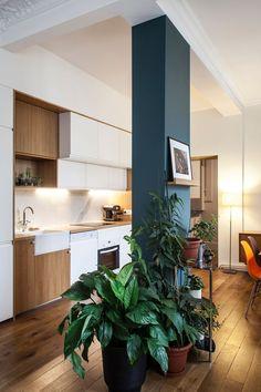 Un espace dédié aux plantes vertes dans l'appartement