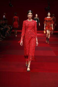 Dolce & Gabbana Woman Catwalk Photo Gallery – Fashion Show Spring Summer 2015