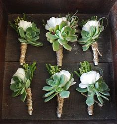 #Boutonnieres: simple, small, masculine, perfect. White ranunculas and echeveria boutonnieres accented with brasilia berries and bear grass finished with twine.