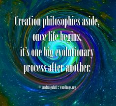 Creation philosophies aside, once life begins, it's one big evolutionary process after another. - Sandra Galati :: wordhugs.org