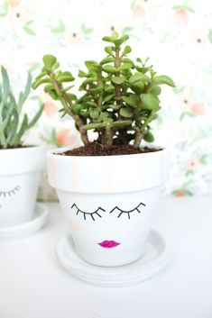 DIY Painted Face Plant Pots by Gold Standard Workshop