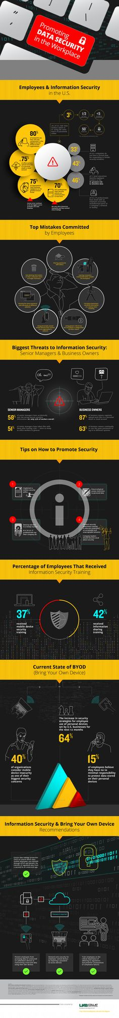 Promoting Data Security in the Workplace #infographic #Data #Security #IT