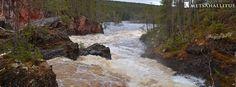 Oulangalla tulvii. Oulankajoen tulvahuippu on meneillään ja Karhunkierros-reitti on poikki muutamasta kohtaa. Lisätietoja Karhunkierros - The Karhunkierros Trail