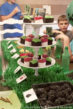 DIY Minecraft Birthday Party   How to Pull off an Awesome Party with Limited Resouces - Southern Revivals