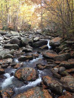 Smokey Mountain trails