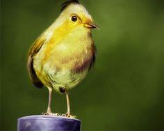 Angry Birds Alice clip-weisser Oiseau