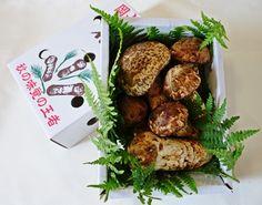Matsutake, мацутакэ, сосна грибы, естественно, внутренний, Окаяма