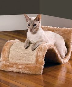 Take a look at this Wavy Cat Scratch 'n' Play by Etna Products on #zulily today!