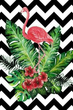 Black & white chevron w/ Flamingo, pink hibiscus flowers & palm fronds - The greatest idea for room decoration, make poster or wallpaper with this picture. Flamingo Wallpaper, Tropical Wallpaper, Flamingo Art, Pink Flamingos, Wall Wallpaper, Pattern Wallpaper, Wallpaper Backgrounds, Iphone Wallpaper, Vintage Frames