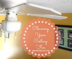 Cleaning Your Ceiling Fan   Aprons and Stilletos