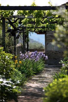 Climbing Vines Backyard Pergola, Pergola Shade, Pergola Kits, Pergola Ideas, Backyard Ideas, Cheap Pergola, Black Pergola, Curved Pergola, Modern Pergola