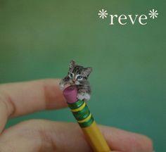 OOAK Realistic Handmade ~ Playful Kitten ~ Miniature 1:12 Sculpture * Reve in Dolls & Bears, Dolls & Bears | eBay