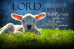 The Lord is my Shepherd, I shall not want. He makes me to lie down in green pastures. Psa 23:1-2a