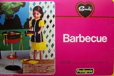 Vintage Sindy Barbecue Set
