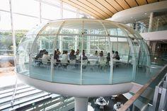 Seikei University Library in Tokyo, Japan | 成蹊大学図書館