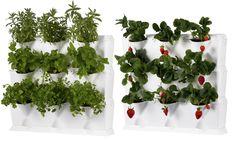 Jardín vertical para mini balcón, patio o cocina. Son módulos Mingarden (blancos o negros) de un plástico duro resistente que no lixivia productos químicos. Es una buena idea para plantar hierbas aromáticas, lechugas... Disponible en UK desde Gardenbeet y en EEUU desde Earthbox.