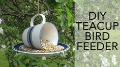 Grab a teacup and saucer at the thrift store to make this quick teacup bird feeder!