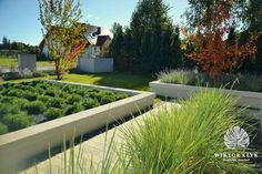 Garden in Szczecin/ ogród w Szczecinie