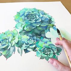 I did some gardening this morning with hubby but we gave up when it got too hot. I'm working on this now and he is playing Gran Turismo on the play station. Do they ever grow up? . One more day should see it finished. #artist_sharing #art_empire #artdaily #followart #artfollow #succulents #succulentobsessed #succulents_only #botanicalpainting #watercolour #watercolor #watercolorpainting #watercolorblog #waterblog #watercolourart #watercolourartist #aquarellepainting #aquarelle #dailyart ...