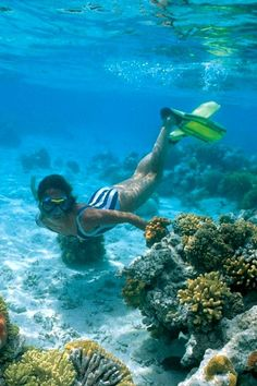 Snorkeling in El Gouna Red Sea Egypt Extreme Water Sports, Virgin Islands Vacation, Egypt Tourism, Hawaii Pictures, Dubai Travel, Summer Bucket Lists, Red Sea, Beach Fun, Snorkeling