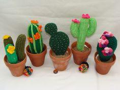 Cactus en macetas chicas