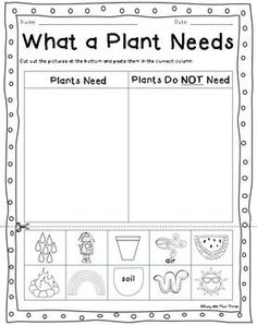 Most fruits have seeds in them; most vegetables are the roots, stems, or leaves of a plant! In this science worksheet, your child learns about edible . 1st Grade Worksheets, Science Worksheets, Worksheets For Kids, Kindergarten Worksheets, Kindergarten Science, Preschool Lessons, Art Lessons Elementary, Science Lessons, Plant Life Cycle Worksheet