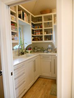 Like the idea of a butlers pantry in the current bar space to achieve storage.  Don't need a sink.  counter space and one wall of open storage and some drawers (dish towels, table cloths)