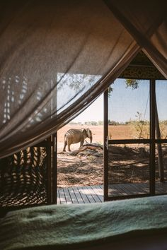 andBeyond Xaranna Okavango Delta #Botswana. Click for the full travel itinerary! Okavango Delta, Austria Travel, Beautiful Places To Travel, Africa Travel, Adventure Is Out There, Countries Of The World, Travel Pictures, Places To Go, Travel Photography