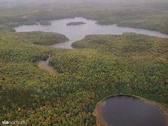 Hydravion au-dessus de la Mauricie, Québec (domaine Sacacomie)