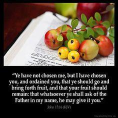 Inspirational Image for John 15:16