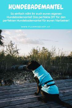 DIY Dog Bathrobe - The bathrobe for your dog - Hunde (themen)- vielseitig, wissenswert & mit kalter Schnauze begleitet - Puerta para Perros