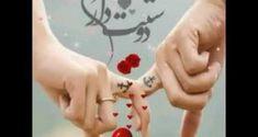 گل رز قرمز؛ عکس های زیباترین گل های رز قرمز برای عکس پروفایل Happy Rose Day Wallpaper, Red Roses