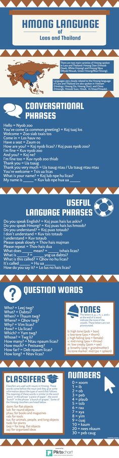 Hmong Language   Piktochart Infographic Editor