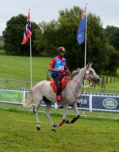 8/28/14 Alltech FEI World Equestrian Games-Endurance 160km in Normandy, France.  Photo: BNA