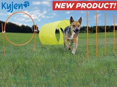 Kyjen Outdoor Agility Kit for your pooch!  The perfect way to entertain and keep Fido in shape.  On sale @Coupaw