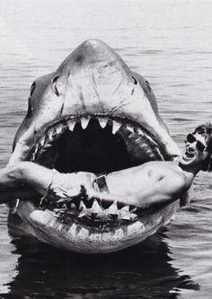 Steven Spielberg & shark