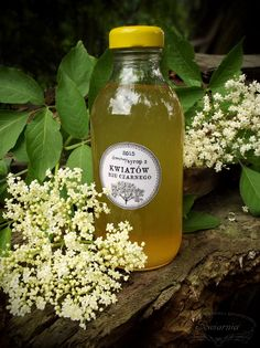 syrop z kwiatów bzu Magic Recipe, Sorbets, Cocktails, Drinks, Home Remedies, Candle Jars, Food And Drink, Herbs, Healthy Recipes