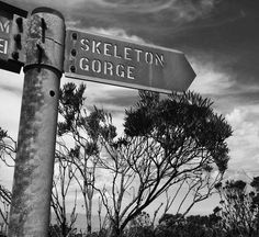 The World Through Fashion Pick One, Modern Luxury, Hiking Trails, Cape Town, Skeleton, World, Vacation, Skeletons, The World