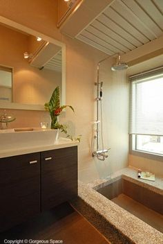 lovely bathroom, wish the step down bath could work....