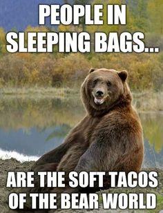 Those bears