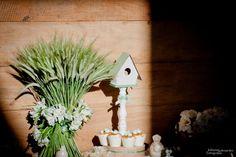Detalhes de Festa: Batizado passarinho - mesa de doces