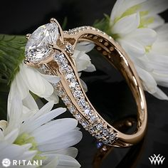 18k Rose Gold Ritani Classic Split Shank Diamond Engagement Ring