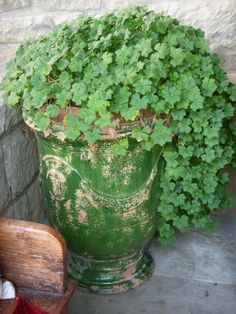 Love this urn and green plant (1) From: French Kissed, please visit